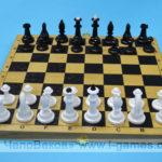 Шахматы + шашки (набор 2 в 1)